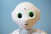 The Humanoid Robot Pepper