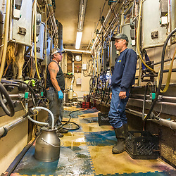 Jason Scruton (right) with a farm worker in the barn at his dairy farm in Farmington, New Hampshire.