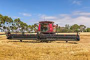 combine harvester in field after harvesting
