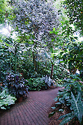Olbrich Botanical Gardens, Madison Wisconsin