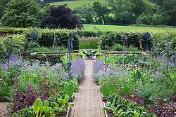 The organic kitchen garden at Holt Farm