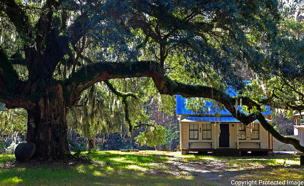 Gullah Geechee style Moses Ficklin Cottage on Daufuskie Island, South Carolina.