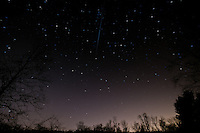 Quadrantids Meteor Trail. Night Sky Over New Jersey. Image taken with a Nikon D3 and 14-2424 mm f/2.8  lens (ISO 400, 14 mm, f/4, 59 sec). Composite of 2 images combined with Startrails.
