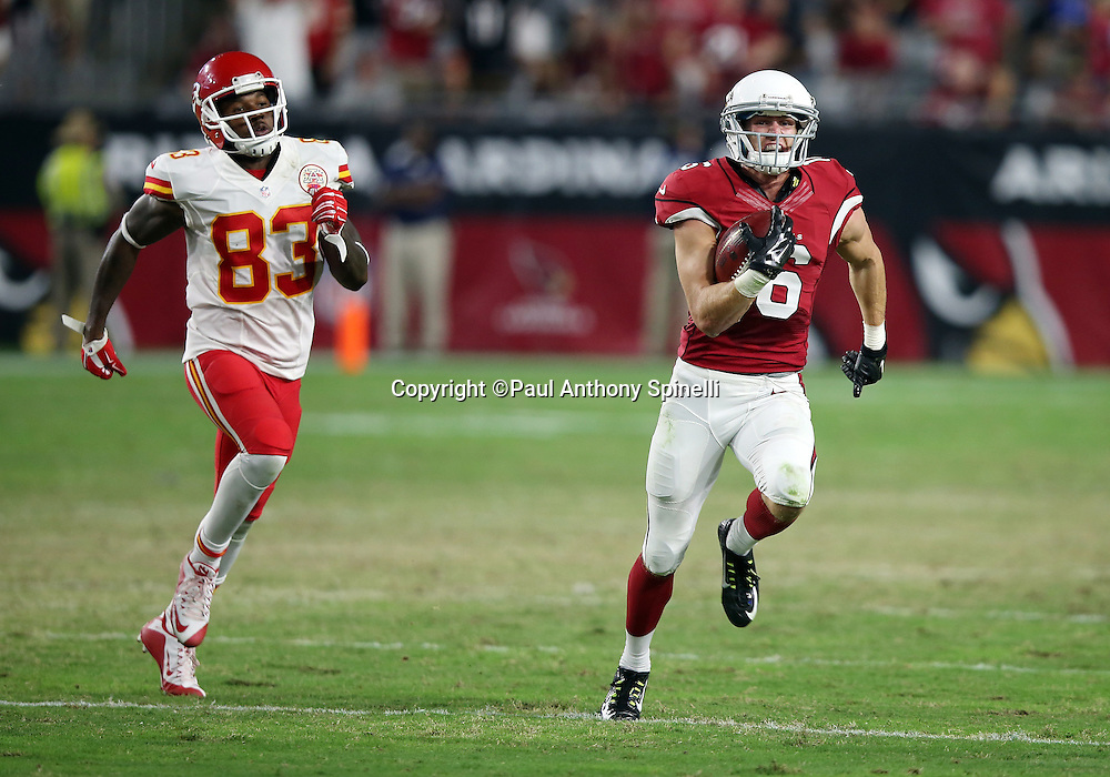 Arizona Cardinals wide receiver Jaxon Shipley (16) is chased by Kansas City Chiefs wide receiver Fred Williams (83) as he returns a free kick 56 yards into Chiefs territory during the 2015 NFL preseason football game against the Kansas City Chiefs on Saturday, Aug. 15, 2015 in Glendale, Ariz. The Chiefs won the game 34-19. (©Paul Anthony Spinelli)