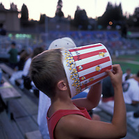 USA, Washington, Young baseball fan finishes off popcorn at Everett Aquasox minor league ball game on summer evening