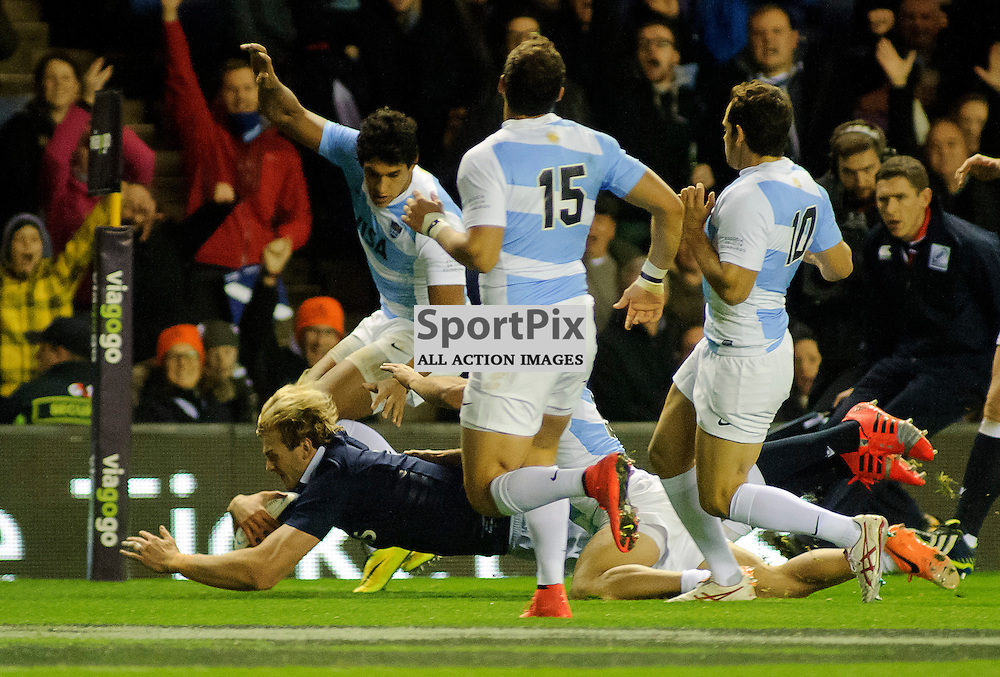 08/11/2014, Murrayfield, Scotland, Richie Gray dives over to score during the Scotland v Argentina Autumn Test game,.......(c) COLIN LUNN | SportPix.org.uk