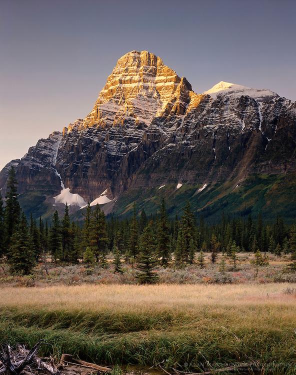 Mount Cephren Banff National Park Alberta Canada