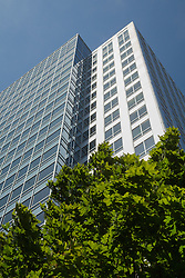 North America, United States, Washington, Bellevue, modern skyscraper tower and trees