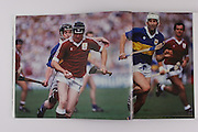 Galway's Joe Cooney and Tipperary's Conor O'Donovan, 1989 semifinal.