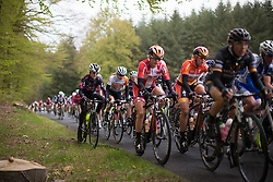 A BTC City Ljubljana rider is momentarily forced off-road during the first, 106.9km road race stage of Elsy Jacobs - a stage race in Luxembourg, in Steinfort on April 30, 2016