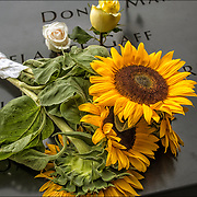 On the 15th anniversary of 9-11 at Ground Zero, sunflowers placed on the memorial plagues  by a loved ones by the name of a family member who died that day.<br /> <br /> The 2,983 names of the victims of the attacks of Sept. 11, 2001, and Feb. 26, 1993, World Trade Center truck bombing are inscribed into bronze parapets surrounding the twin memorial pools.