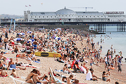 © Licensed to London News Pictures. 25/07/2014. Brighton, UK. People relaxing and sunbathing on Brighton beach during during lunch. The weather is expected to reach temperatures around the 25C in Brighton and the South Coast. Photo credit : Hugo Michiels/LNP