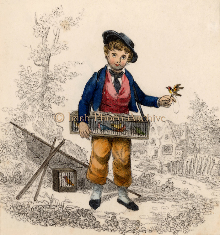 Birdcatcher with small songbirds such as Goldfinches and Robins which would be sold to be kept in cages as pets. England early 19th century. Hand-coloured lithograph.