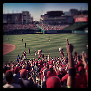 "An Instagram of fans celebrating ""Teddy"" winning the President's Race at Nationals Park in Washington D.C."