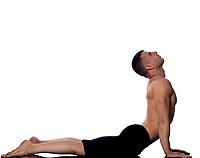 Man yoga cobra pose sun salutation surya namaskar gymnastic stretching curve posture isolated studio on white background