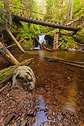 Waterfalls Canyon eco-path