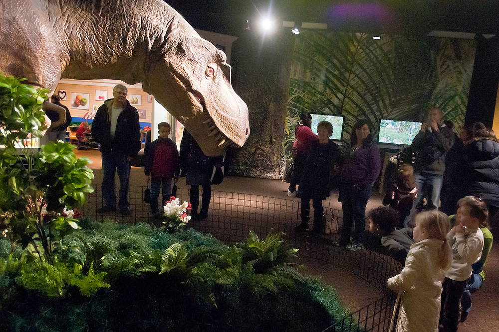 Lathan Goumas | The Flint Journal..January 28, 2012 - Visitors look at the simulated Tyrannosaurs rex at the Discover Dinosaurs and Other Prehistoric Creatures exhibit in the Sloan Museum in Flint on Saturday. The well know carnivorous dinosaur is the final animatronic simulation at the exhibit which will be held at the museum until May 6th.