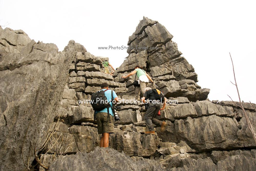 Madagascar, Ankarana Special Reserve. Tsingy - eroded limestone