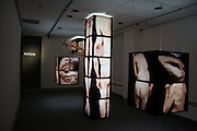 Ginger Frye, Fragments, 2012, wood, plexiglas, backlit film, Installation Dimensions 485 sq