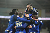 Cardiff City v Burnley 281115