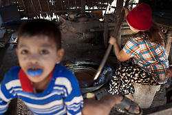 The sweet juice extracted from the palm trees is used to make sugar or wine. At Ka Myaw Gyi village in the outskirts of Dawei, Myanmar.