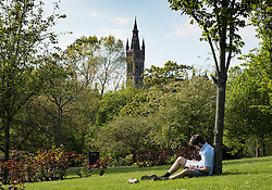 Student reading in Kelvingrove Park with Glasgow University to rear in Glasgow, Scotland, United Kingdom