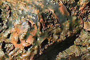 Deildartunguhver, hot spring, Iceland close up of iron oxide deposit