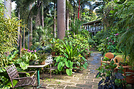 Seating on the main path leading to the hosue and verandah high up in the gully in Hunte's Gardens, Coffee Gully, St. Joseph, Barbados