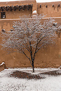 Snow covers a tree at the adobe style New Mexico Museum of Art in the historic district December 12, 2015 in Santa Fe, New Mexico.
