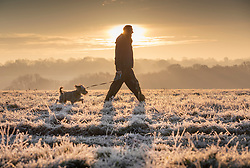 © Licensed to London News Pictures. 02/12/2019. Epsom, UK. A dog walker braves the cold on Epsom Downs at sunrise. A cold start for some parts of the south with temperatures just below freezing at dawn. Photo credit: Peter Macdiarmid/LNP