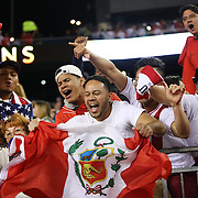 FOXBOROUGH, MASSACHUSETTS - JUNE 12:  Peru fans celebrate their sides shock 1-0 victory during the Brazil Vs Peru Group B match of the Copa America Centenario USA 2016 Tournament at Gillette Stadium on June 12, 2016 in Foxborough, Massachusetts. (Photo by Tim Clayton/Corbis via Getty Images)