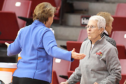 04 January 2015:  Cindy Stein chats with Jill Hutchinson during an NCAA MVC (Missouri Valley Conference) women's basketball game between the Southern Illinois Salukis and the Illinois Sate Redbirds at Redbird Arena in Normal IL