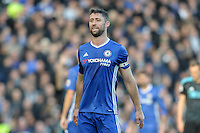 Gary Cahill of Chelsea during the Premier League match between Chelsea and West Bromwich Albion at Stamford Bridge, London, England on 11 December 2016. Photo by Salvio Calabrese.