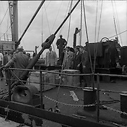 """31/07/1962<br /> 07/31/1962<br /> 31 July 1962<br /> Oil drilling equipment arrives at North Wall, Dublin. Image shows unloading of oil drilling machinery for Ambassador Irish oil. Some of the crates and equipment on the deck of the """"Kendall""""."""