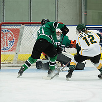 2nd year forward Chelsea Hallson (12) of the Regina Cougars in action during the Women's Hockey Homeopener on October 7 at Co-operators arena. Credit: Arthur Ward/Arthur Images