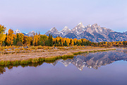 Grand Teton and the Cathedral group at dawn during autumn