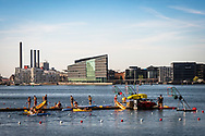 A game of water polo takes place in Copenhagen Harbour (Københavns Havn) against the backdrop of the city © Travel Photographer in Copenhagen Matthew James