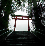 At the top of a long set of stairs is the Hakone Shrine.