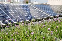 24 MAY 2005, BERLIN/GERMANY:<br /> Solaranlage auf dem Dach des Willy-Brandt-Hauses<br /> IMAGE: 20050524-01-017<br /> KEYWORDS: Photovoltaik, Sonnenenergie, Solarenergie, Umwelt, environment, Energie, Strom, Blumen, flowers, wiese, Dachbegruenung, Dachbegrünung
