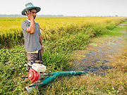 17 MARCH 2014 - LAM LUK KA, PATHUM THANI, THAILAND: A farmer tries to start the irrigation pump in his rice field in Pathum Thani. She said the drought in central Thailand would cut her rice crop and family income by at least one third. It hasn't rained in central Thailand in more than three months, impacting agriculture and domestic water use. Many farms are running short of irrigration water and salt water from the Gulf of Siam has come up the Chao Phraya River and infiltrated the water plants in Pathum Thani province that serve Bangkok. PHOTO BY JACK KURTZ