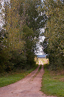 View down a country track to the fields beyond, in the Chablis region of France.
