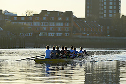 © Licensed to London News Pictures. 26/02/2014. London, UK. Rowers exercise in the low waters of the Thames. Sunrise over the River Thames at Hammersmith in West London today 26th February 2014. Photo credit : Stephen Simpson/LNP