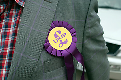 © Licensed to London News Pictures. 29/04/2014. Slough, UK . Detail of UKIP rosette. NIGEL FARAGE leader of UKIP in Slough today 29 April 2014 to congratulate local activists on more than doubling the candidates the party will field in local elections. Photo credit : Stephen Simpson/LNP