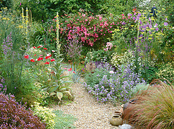 The gravel garden at Ketley's in high summer. Planting includes Malva sylvestris 'Primley Blue', Rosa 'Dorothy Perkins', Clematis 'Perle d'Azure', Stipa arundinacea, fennel and verbascums.