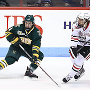 Jonathan Turk #8 of the Vermont Catamounts and Kevin Roy #15 of the Northeastern Huskies on the ice during the game at Matthews Arena on January 18, 2014 in Boston, Massachusetts. (Photo by Elan Kawesch)