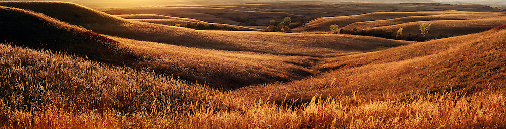 Sunset in the Flint Hills at the Konza Prairie Natural Research Area near Manhattan, Kansas.