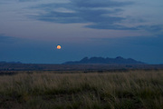 The full moon in July rises over the Las Cienegas Conservation Area in the grasslands of southern Arizona, USA, north of Sonoita.