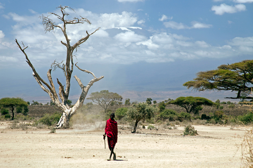 Africa, Kenya, Amboseli. A lone Maasai man at Amboseli, with Mt. Kilimanjaro in distance.
