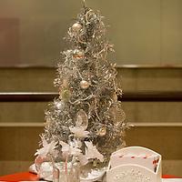 DCPA // Christmas Carol