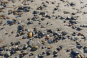 Pebbles on sand, North Beach, Deception Pass State Park, Whidbey Island, Washington, USA. In this scenic park, an old growth evergreen forest meets the turbulent waters of Deception Pass, a strait which separates Whidbey Island from Fidalgo Island and connects Skagit Bay (part of Puget Sound), with the Strait of Juan de Fuca. Tidal current speeds reach 8 knots (9 mph) and create standing waves, large whirlpools, and roiling eddies visible from the shoreline and from spectacular Deception Pass Bridge, which spans 976 feet long, 180 feet above the water.